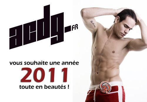 Voeux-acdg-2011