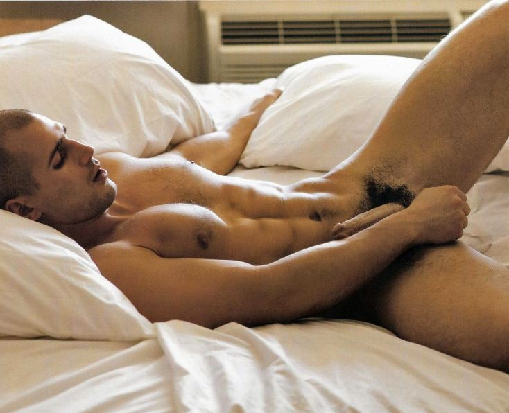Todd-sanfield-erection
